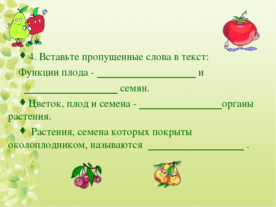 4. Вставьте пропущенные слова в текст: Функции плода - и семян. Цветок, плод...