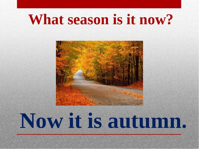 Now it is autumn. What season is it now?