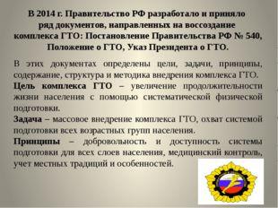 В 2014 г. Правительство РФ разработало и приняло ряд документов, направленных