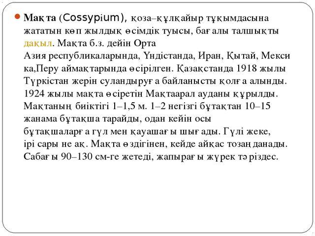 Мақта(Cossypіum), қоза–құлқайыр тұқымдасына жататын көп жылдық өсімдік туысы...