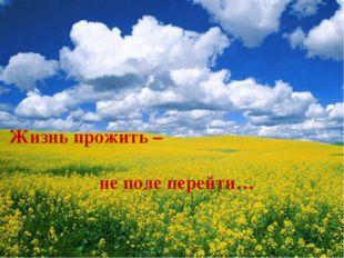 Жизнь прожить – не поле перейти…