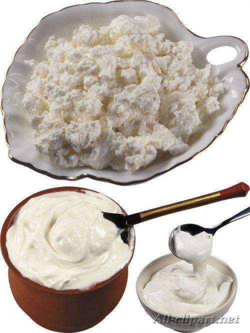 Молочные продукты - сметана, творог