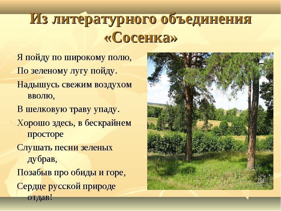 Из литературного объединения «Сосенка» Я пойду по широкому полю, По зеленому...