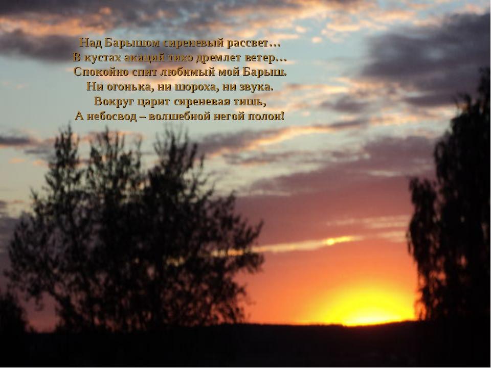Над Барышом сиреневый рассвет… В кустах акаций тихо дремлет ветер… Спокойно с...