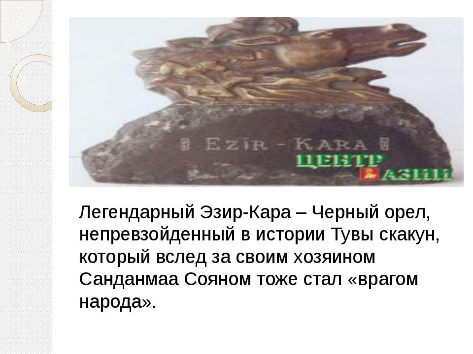 Легендарный Эзир-Кара – Черный орел, непревзойденный в истории Тувы скакун,...