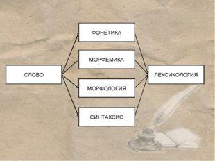 МОРФЕМИКА ЛЕКСИКОЛОГИЯ ФОНЕТИКА МОРФОЛОГИЯ СИНТАКСИС СЛОВО