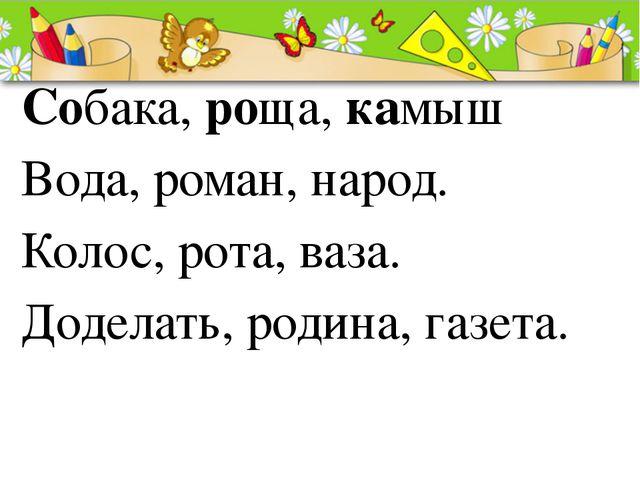 Собака, роща, камыш Вода, роман, народ. Колос, рота, ваза. Доделать, родина,...