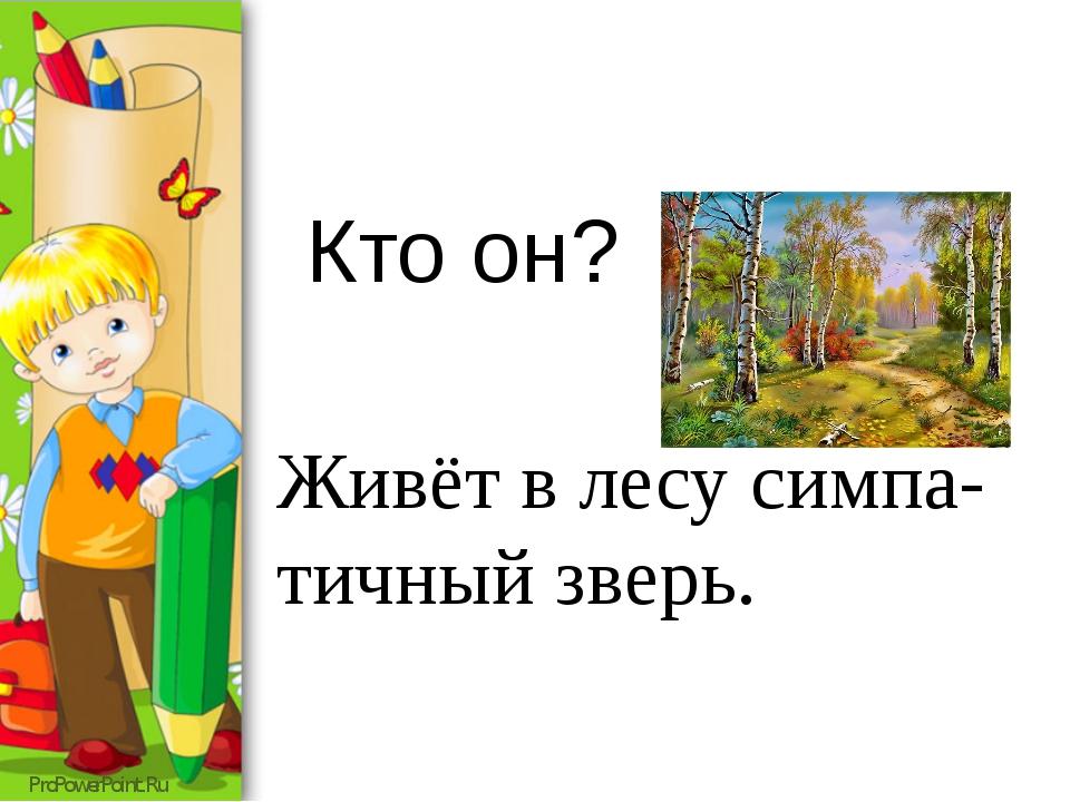Кто он? Живёт в лесу симпа-тичный зверь. ProPowerPoint.Ru