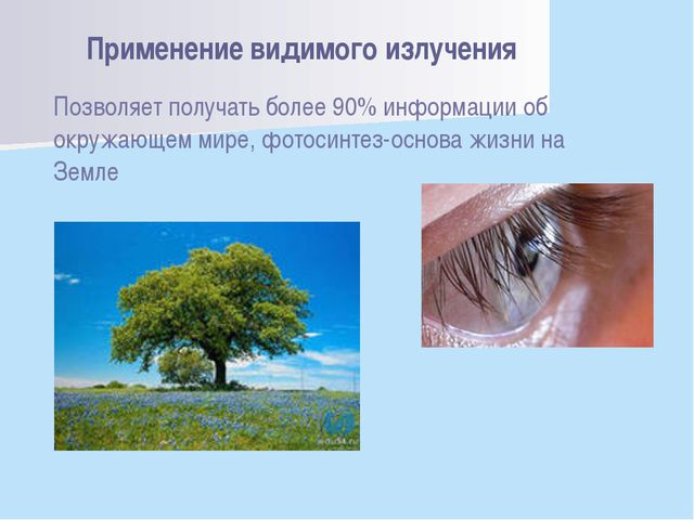 Позволяет получать более 90% информации об окружающем мире, фотосинтез-основа...