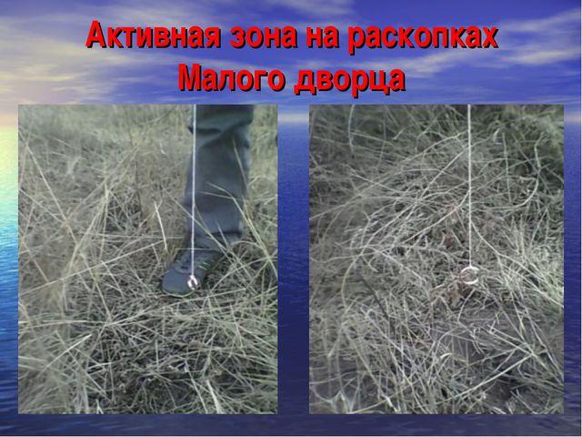 Активная зона на раскопках Малого дворца