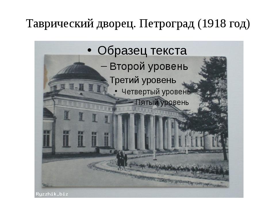 Таврический дворец. Петроград (1918 год)