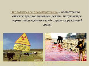 Экологическое правонарушение – общественно опасное вредное виновное деяние, н