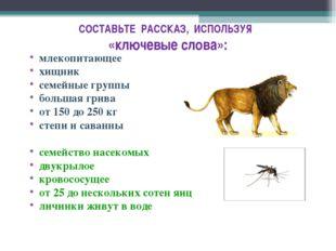 СОСТАВЬТЕ РАССКАЗ, ИСПОЛЬЗУЯ «ключевые слова»: млекопитающее хищник семейные