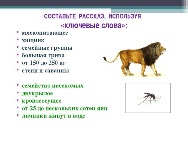 СОСТАВЬТЕ РАССКАЗ, ИСПОЛЬЗУЯ «ключевые слова»: млекопитающее хищник семейные...