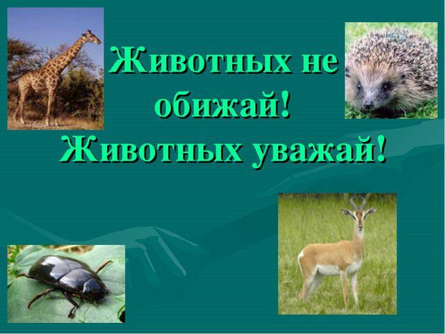 Животных не обижай! Животных уважай!