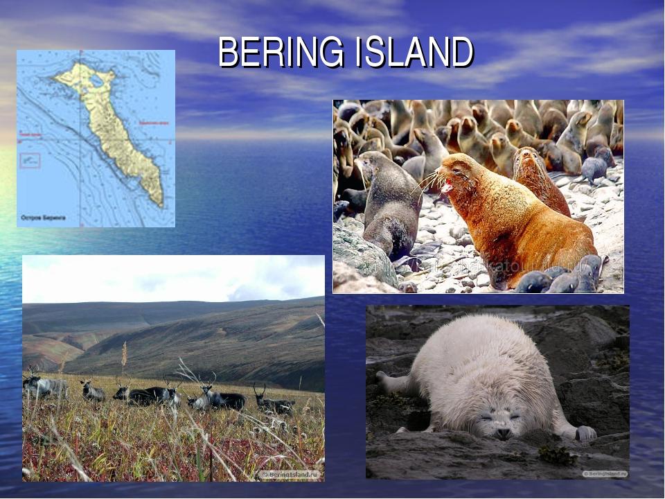 BERING ISLAND