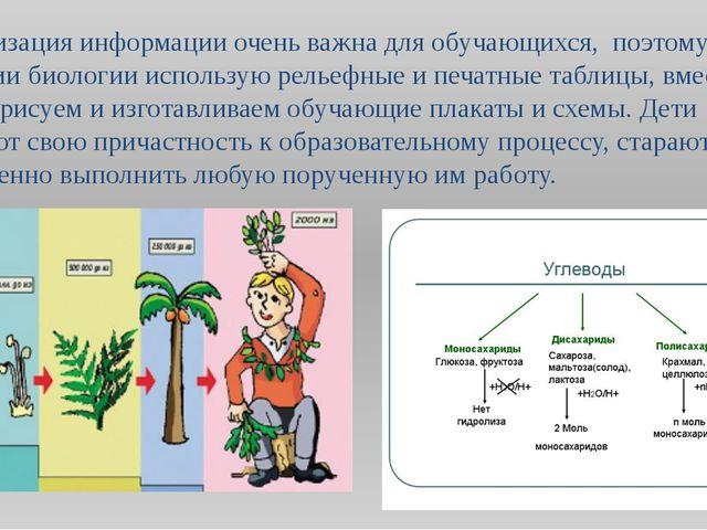 Визуализация информации очень важна для обучающихся, поэтому в обучении биоло...