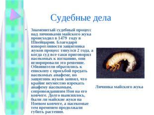 Судебные дела Знаменитый судебный процесс над личинками майского жука происх