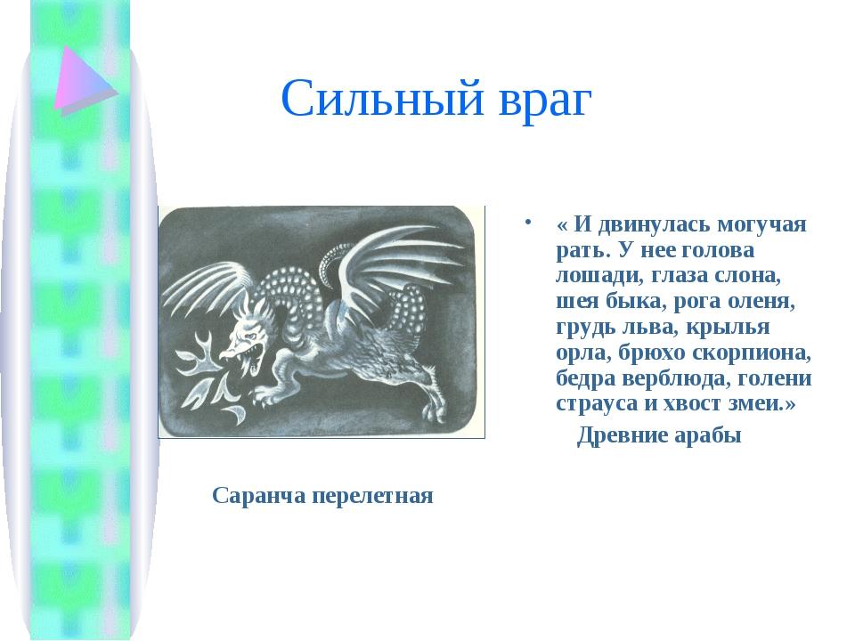 Сильный враг « И двинулась могучая рать. У нее голова лошади, глаза слона, ш...