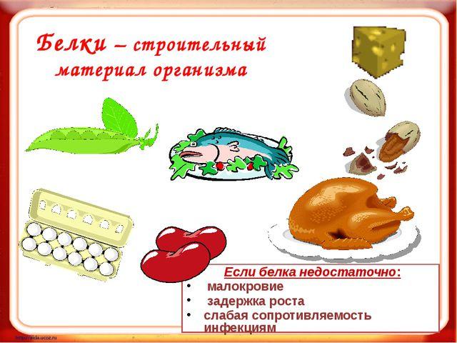 Белки – строительный материал организма Если белка недостаточно: малокровие з...