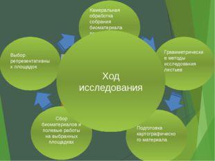 Выбор репрезентативных площадок Камеральная обработка собрания биоматериала п