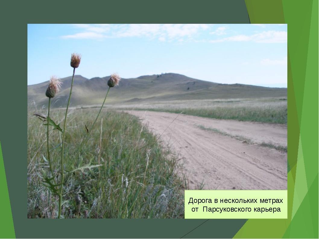 Дорога в нескольких метрах от Парсуковского карьера