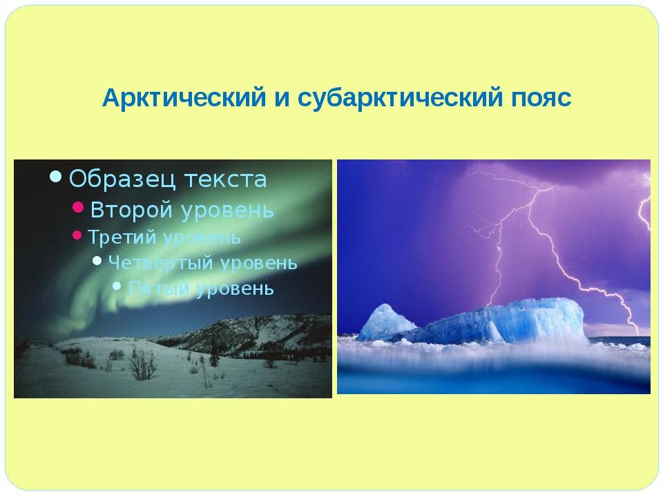 Арктический и субарктический пояс