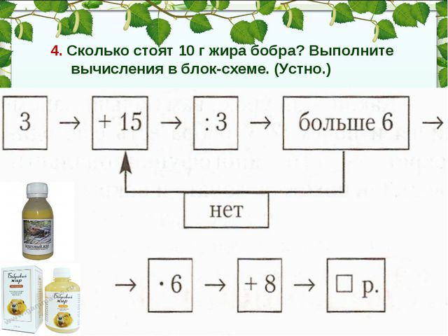 4. Cколько стоят 10 г жира бобра? Выполните вычисления в блок-схеме. (Устно.)