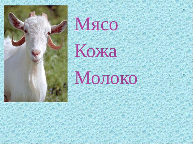 Мясо Кожа Молоко