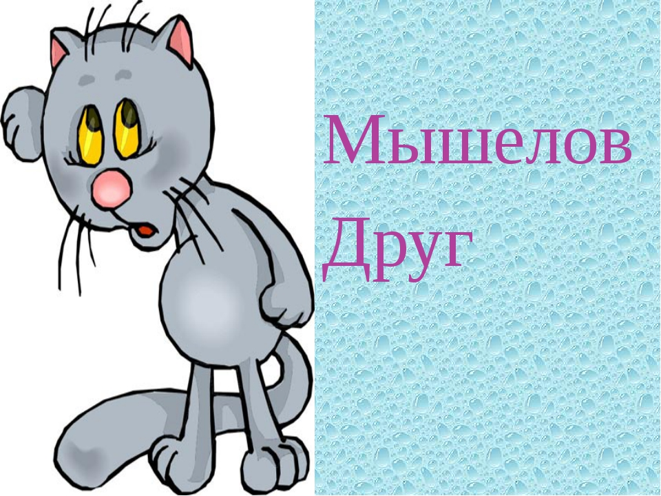 Мышелов Друг