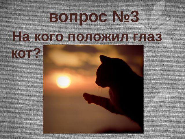 вопрос №3 На кого положил глаз кот?
