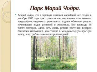 Парк Марий Чодра. Марий чодра, что в переводе означает марийский лес создан