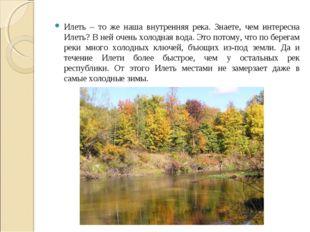 Илеть – то же наша внутренняя река. Знаете, чем интересна Илеть? В ней очень
