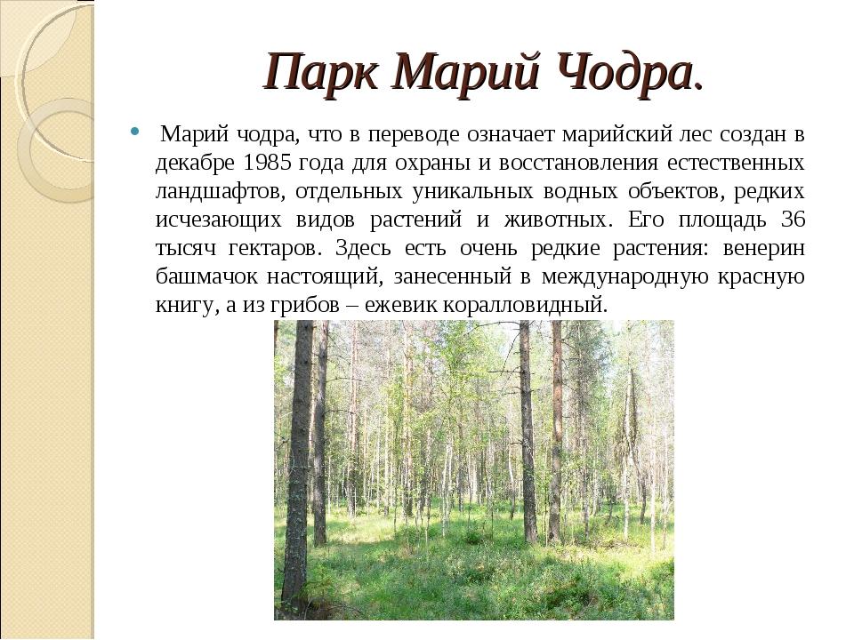 Парк Марий Чодра. Марий чодра, что в переводе означает марийский лес создан...