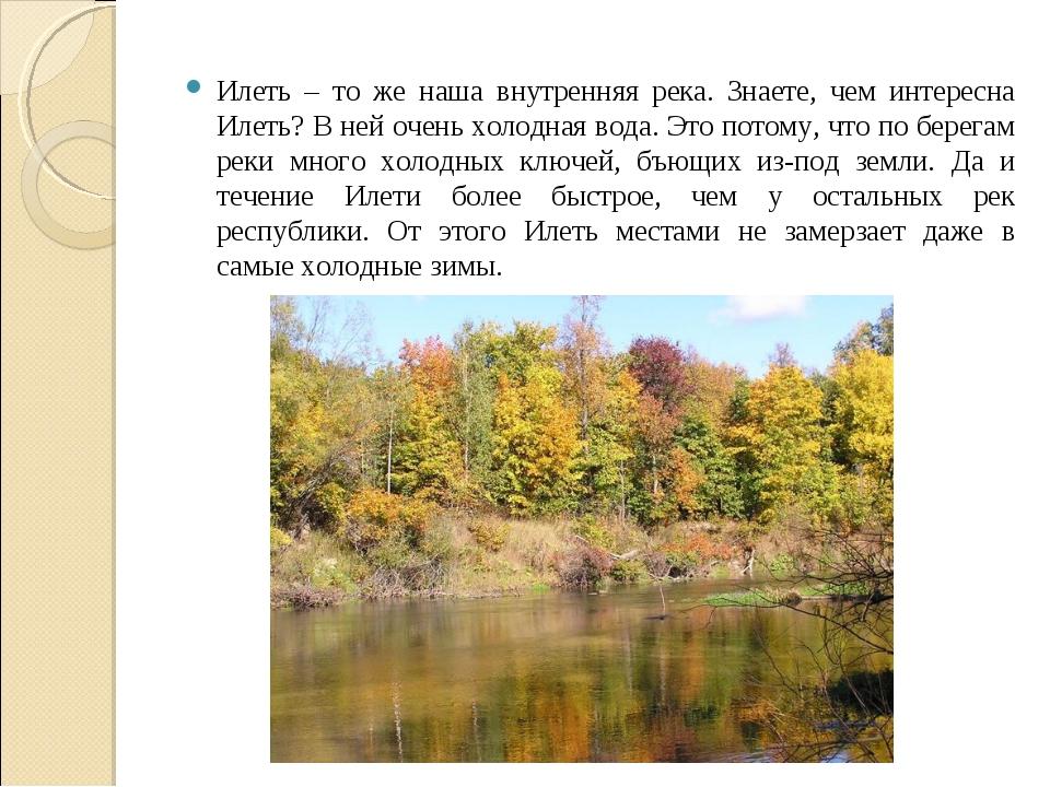 Илеть – то же наша внутренняя река. Знаете, чем интересна Илеть? В ней очень...
