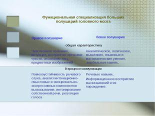 Правое полушарие Функциональная специализация больших полушарий головного моз