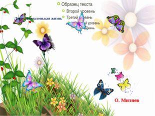 Лето- это маленькая жизнь О. Митяев
