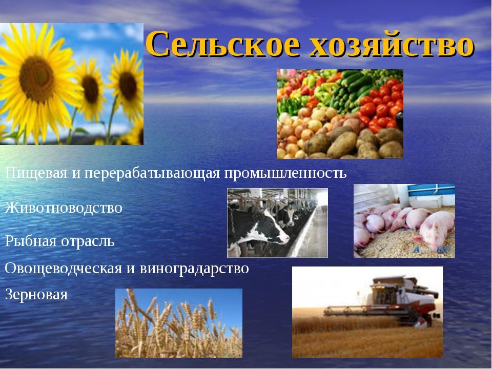 Сельское хозяйство Животноводство Рыбная отрасль Пищевая иперерабатывающая п...