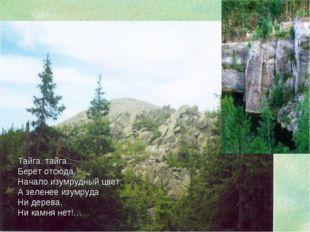 Тайга, тайга… Берёт отсюда Начало изумрудный цвет. А зеленее изумруда Ни дере
