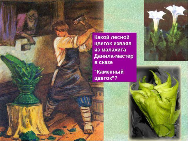 """Какой лесной цветок изваял из малахита Данила-мастер в сказе """"Каменный цветок""""?"""