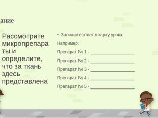 Задание Запишите ответ в карту урока. Например: Препарат № 1 - ______________