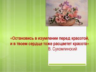 «Остановись в изумлении перед красотой, и в твоем сердце тоже расцветет красо