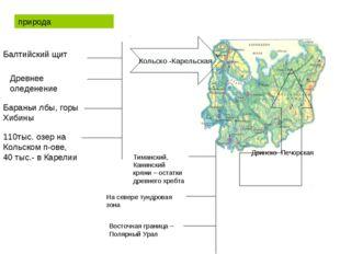 Кольско -Карельская Двинско -Печорская природа Балтийский щит Древнее оледен