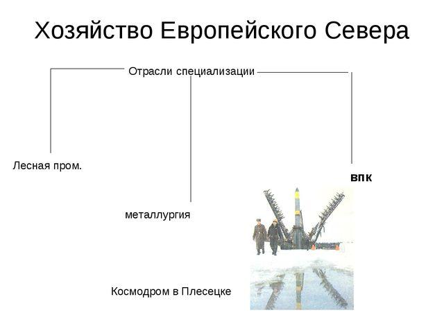 Хозяйство Европейского Севера Отрасли специализации Лесная пром. металлургия...
