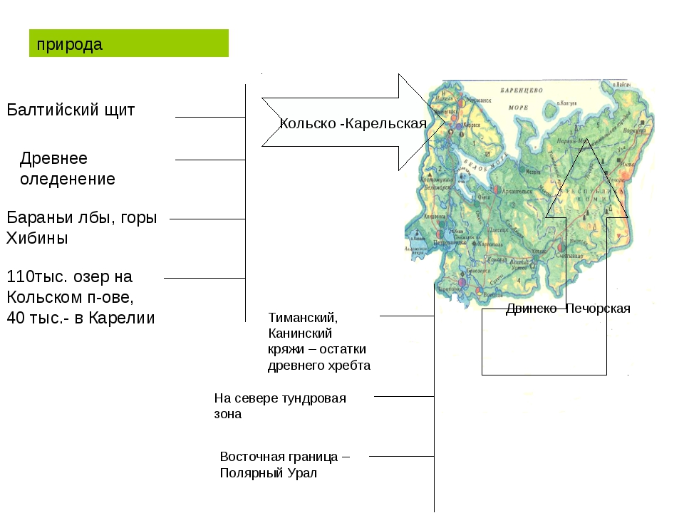 Кольско -Карельская Двинско -Печорская природа Балтийский щит Древнее оледен...