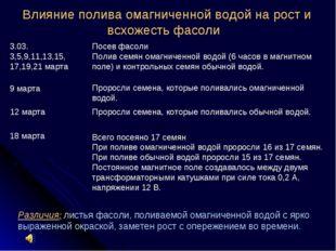 Влияние полива омагниченной водой на рост и всхожесть фасоли 3.03. 3,5,9,11,1