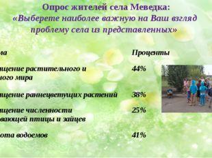 Опрос жителей села Меведка: «Выберете наиболее важную на Ваш взгляд проблему