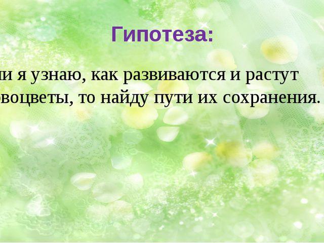 Гипотеза: Если я узнаю, как развиваются и растут первоцветы, то найдупути и...