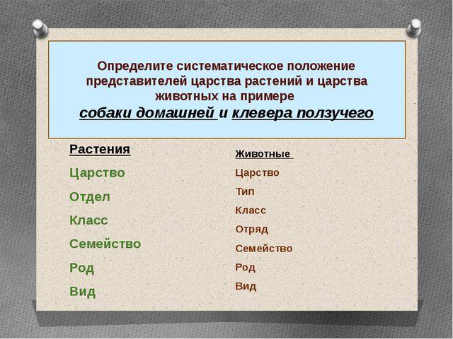 Чем классификация растений отличается от классификации животных? Растения Цар...