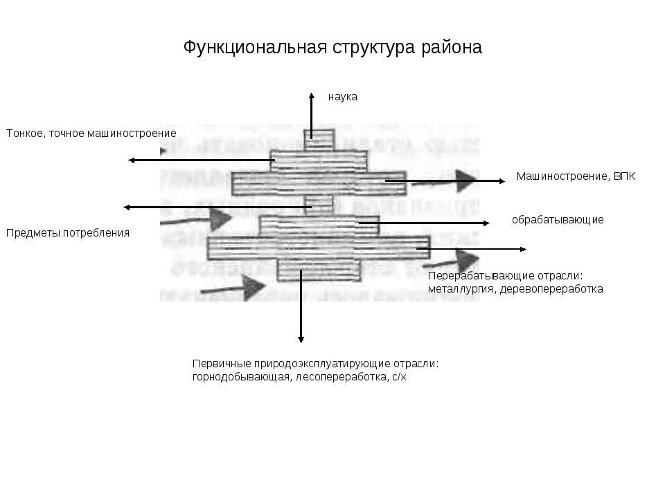 Функциональная структура района Первичные природоэксплуатирующие отрасли: гор...